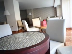 salon-hotel-fuengirola-hotelangela
