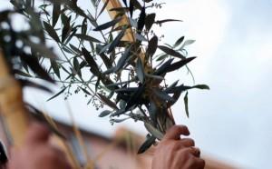La Semana Santa llega a Los Boliches - Hotel Ángela Fuengirola